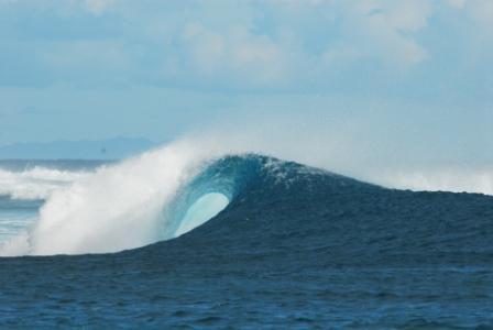 surf111.jpg
