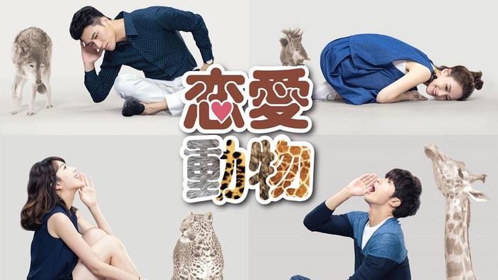 写真:台湾ドラマ「恋愛動物」