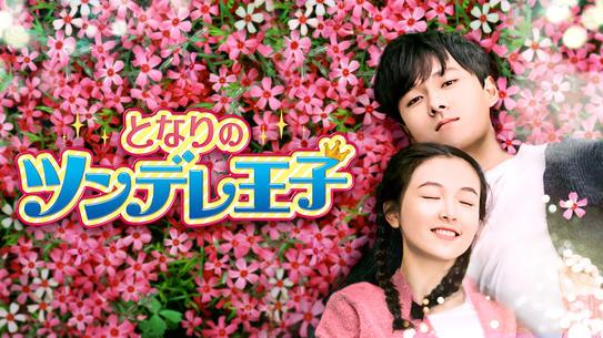 中国ドラマ<br>「となりのツンデレ王子」