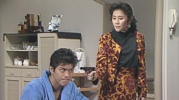 赤川次郎サスペンス 泥棒に手を出すな!