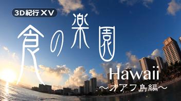 3D紀行XV 食の楽園Hawaii~オアフ島編~