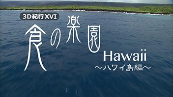 3D紀行XVI 食の楽園Hawaii~ハワイ島編~