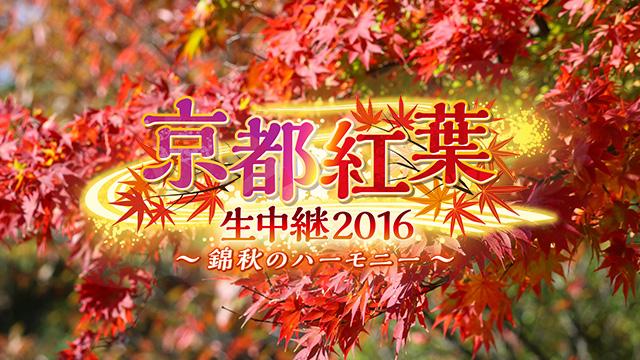 写真:京都紅葉中継2016 ~錦秋のハーモニー~