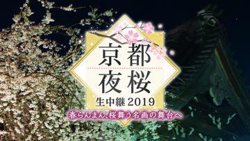 京都夜桜生中継 2019