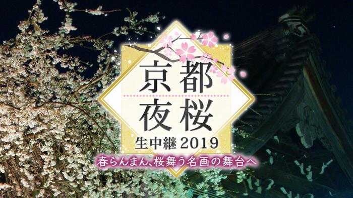 写真:京都夜桜生中継 2019