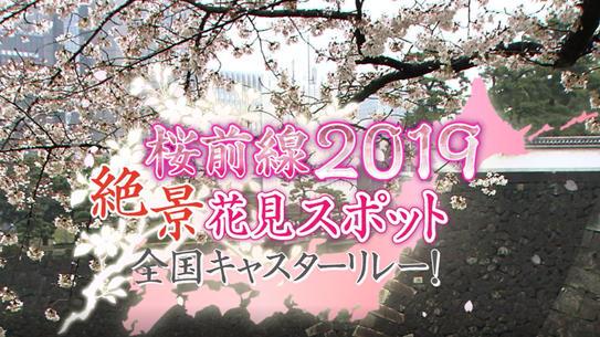 桜前線2019絶景花見スポット全国キャスターリレー!