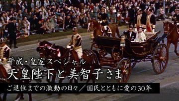 平成・皇室スペシャル 天皇陛下と美智子さま ご退位までの激動の日々/国民とともに愛の30年