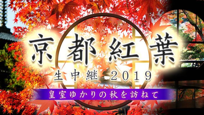 写真:京都紅葉生中継2019<br>~皇室ゆかりの秋を訪ねて~