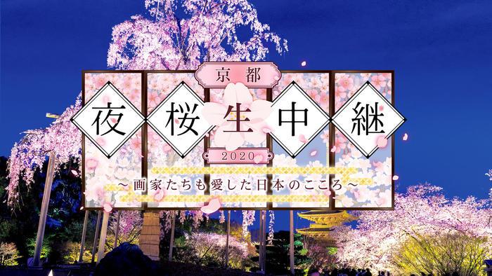 写真:京都夜桜生中継2020~画家たちも愛した日本のこころ~