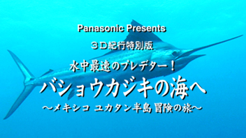 3D紀行特別版<br>水中最速のプレデター!バショウカジキの海へ~メキシコ ユカタン半島・冒険の旅~