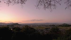 goriyakusan_11_3.jpg