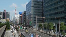 goriyakusan_2_4.jpg