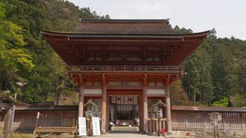 goriyakusan_32_2.jpg
