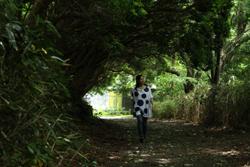 日本ほのぼの散歩 第8回「神奈川県・箱根~大自然の鼓動と歴史が香る 心ほぐれる癒しの風情~」
