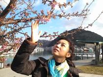 日本ほのぼの散歩 第24回「開国ロマン漂う 早春の下田」