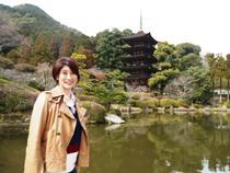 日本ほのぼの散歩 第25回「室町時代の栄華を伝える『西の京』山口」
