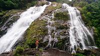 日本ほのぼの散歩2時間スペシャル「世界遺産・屋久島 大自然の中で神秘と出会う」