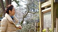 2時間スペシャル「北陸新幹線開業でにぎわう 富山県 高岡・氷見の旅」