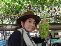 日本ほのぼの散歩 第60回「