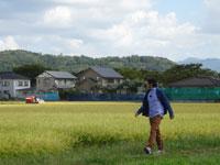 日本ほのぼの散歩 第61回「新米の季節!庄内平野の恵みを味わう」