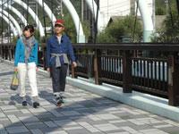 日本ほのぼの散歩 第62回「オリーブが彩る秋の小豆島」
