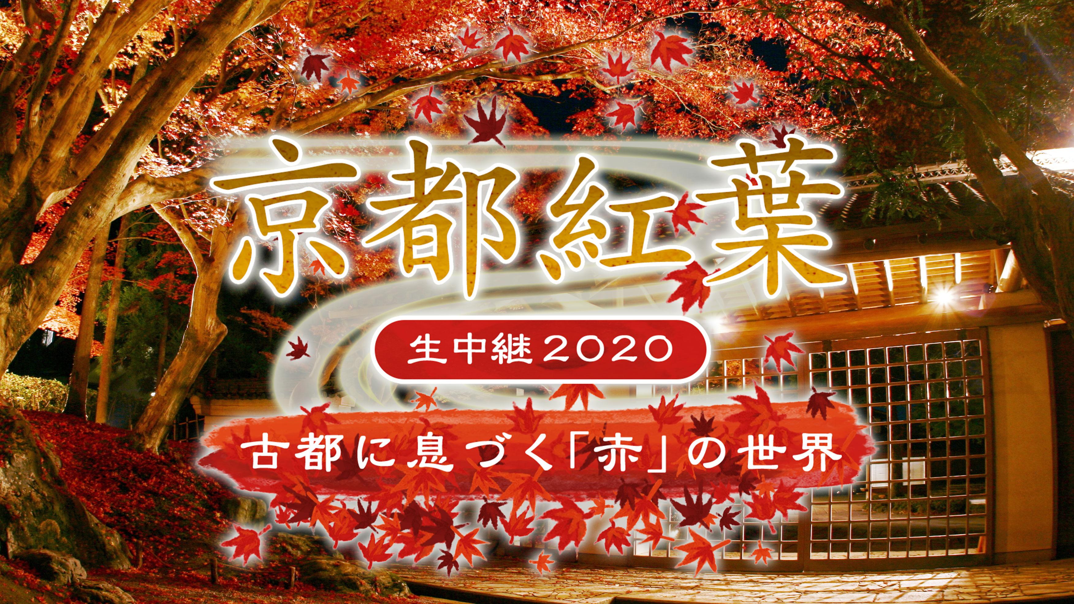 京都紅葉生中継2020<br>~古都に息づく「赤」の世界~