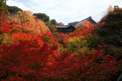 kyoto-roman_15.jpg