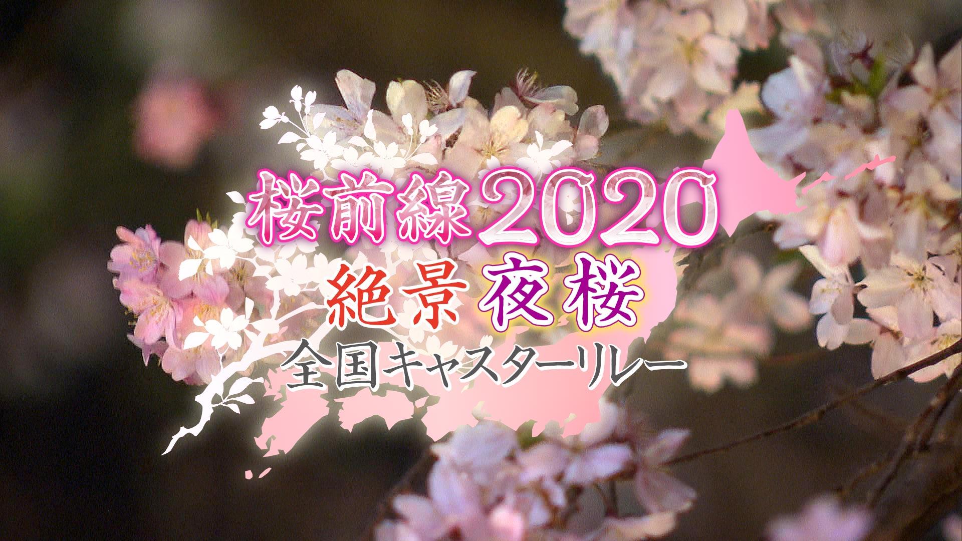 桜前線2020 絶景夜桜 全国キャスターリレー