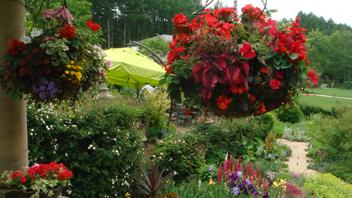 写真:ケイ山田の英国庭園便り