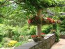 ケイ山田の英国庭園便り