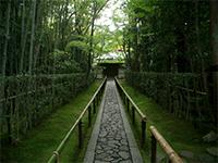 国宝・山水図と戦国時代の夫婦愛 〜京都・紫野 高桐院 第30回
