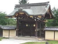 嵯峨野の夏 大覚寺を訪ねて 第46回