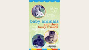 動物の赤ちゃん