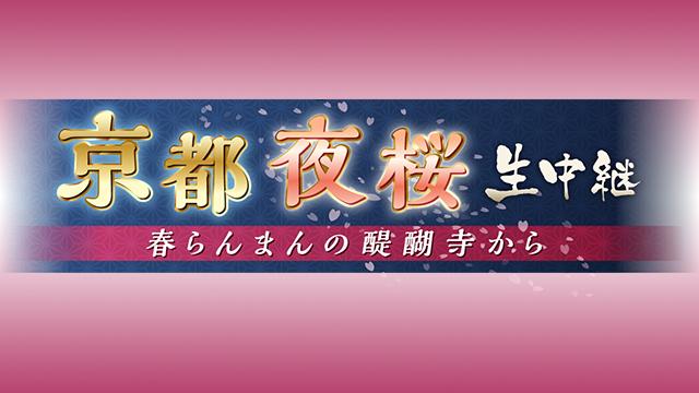京都 夜桜 生中継  春らんまんの醍醐寺から