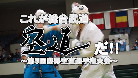 これが総合武道・空道だ!! ~第5回世界空道選手権大会~