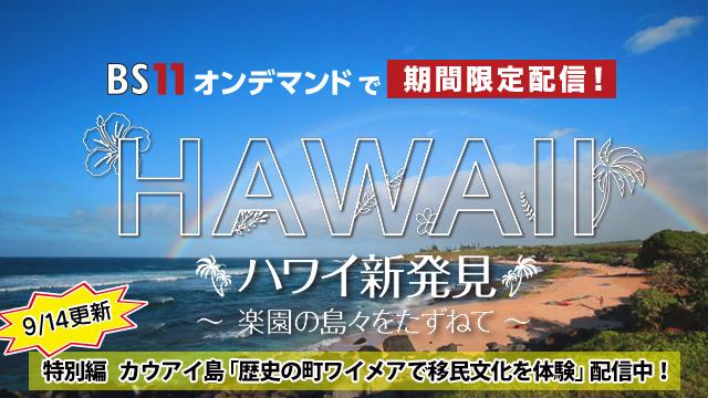 BS11オンデマンド ハワイ特別編(1週目)