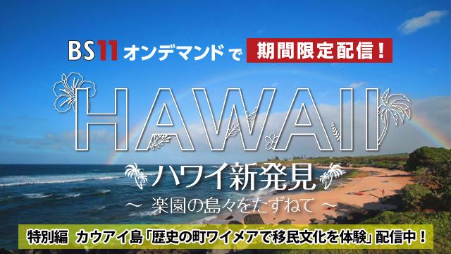 BS11オンデマンド ハワイ特別編(2週目)