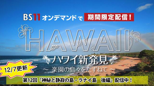 BS11オンデマンド ハワイ#12(1週目)