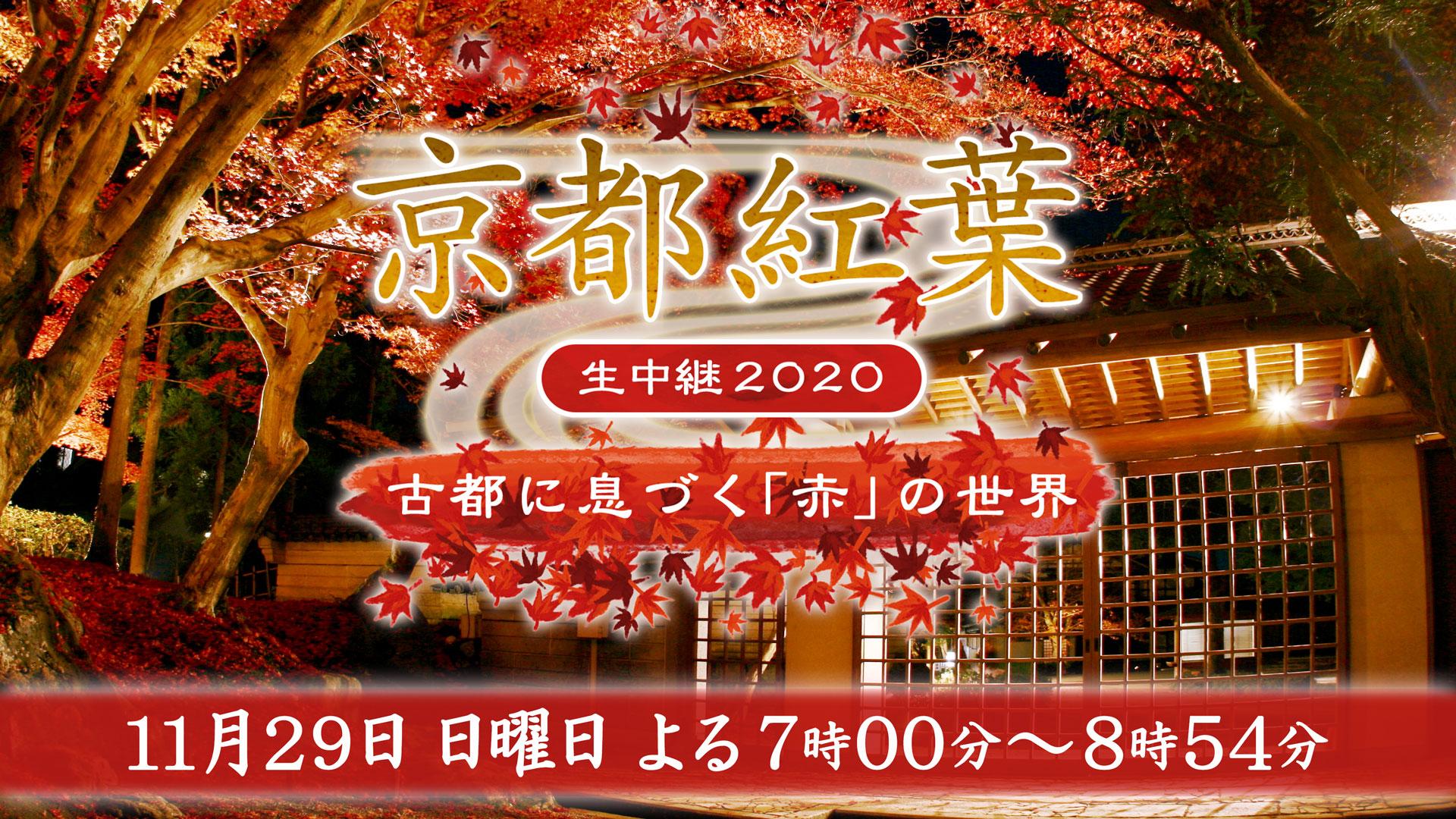 京都紅葉生中継2020 ~古都に息づく「赤」の世界~